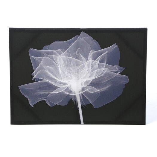 X-Ray Flower Canvas Art