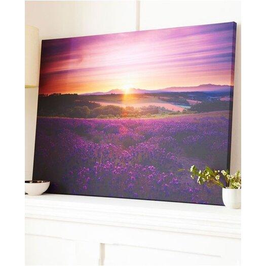 Graham & Brown Graham & Brown Lavendar Sunset Art Photographic Print on Canvas