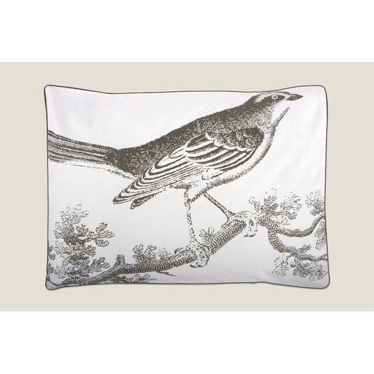 Thomas Paul Ornithology Sham