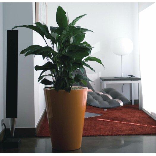 Vondom Fang Round Pot Planter