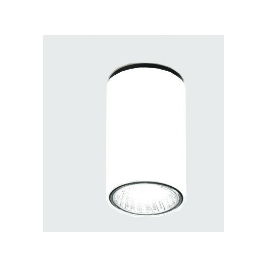 Zaneen Lighting Kronn 1 Light Flush Mount