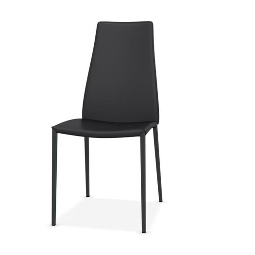 Aida Metal Chair (Set of 2)