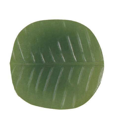 Front Of The House Philodendron Banana Leaf Coaster