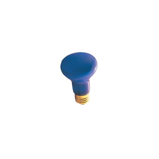 Bulbrite Industries 50W 120-Volt Light Bulb