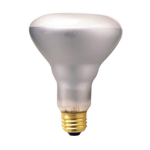 Bulbrite Industries 65W 120-Volt (2700K) Incandescent Light Bulb