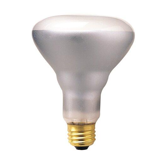 Bulbrite Industries 65W 130-Volt (2700K) Incandescent Light Bulb