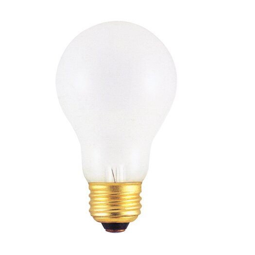 Bulbrite Industries 100W Frosted 220-Volt (2600K) Incandescent Light Bulb (Pack of 2)