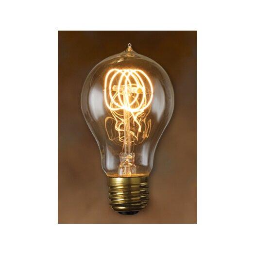 Bulbrite Industries Nostalgic Edison Warm Glow Incandescent Light Bulb (Pack of 6)