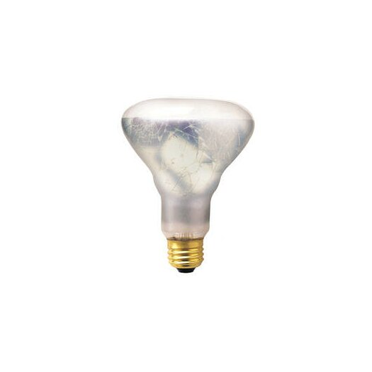 Bulbrite Industries 65W 130-Volt Incandescent Light  Bulb