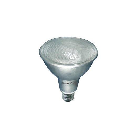 Bulbrite Industries 15W 120-Volt (5000K) Compact Fluorescent Light Bulb