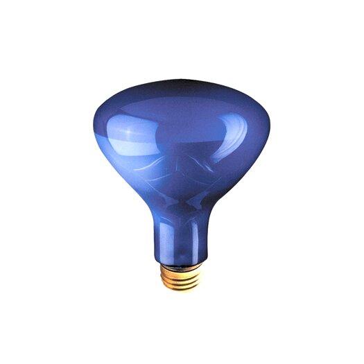 Bulbrite Industries 75W Blue Incandescent Light Bulb