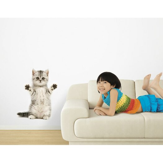 4 Walls Hang in There, Kitty! Wall Decal