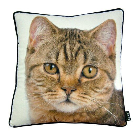 lava British Cat Throw Pillow