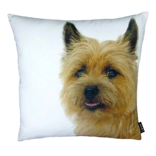 lava Terri Throw Pillow