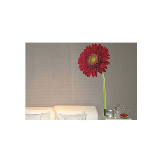 ADZif Foto Gerbera Wall Decal