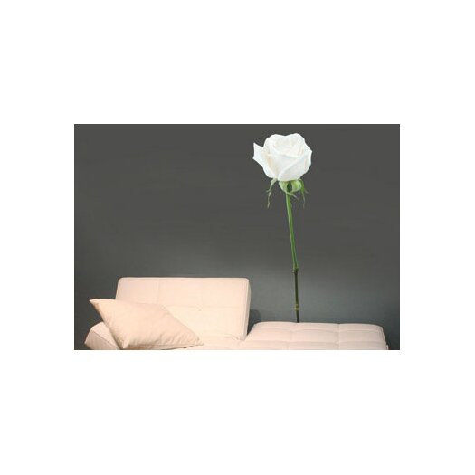 Foto Rose Wall Decal