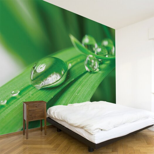 Multi Pure Wall Mural