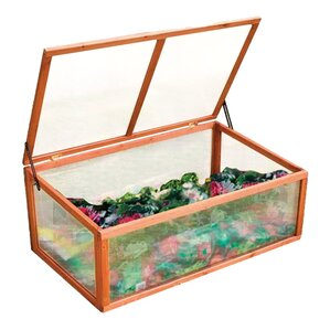 Greer Miniature Greenhouse
