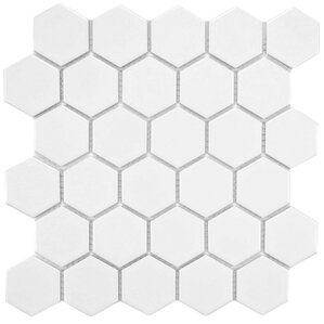 Porcelain Hexagon Mosaic Tile