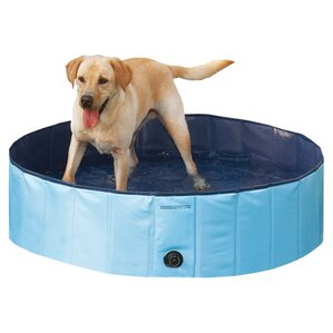 Roxie Pet Pool