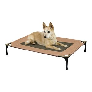 Elevated Pet Cot