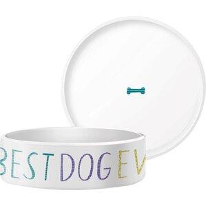 Best Dog Pet Bowl