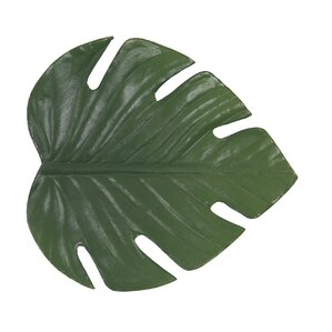 Philodendron Leaf Coaster (Set of 8)