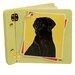 Lexington Studios Animals Black Lab Mini Book Photo Album