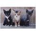 Fallen Fruits Kittens Doormat