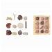 Fallen Fruits 18 Piece Decorative Fossil Giftbox Sculpture Set