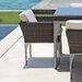 SkyLine Design Brafta Dining Arm Chair with Cushion