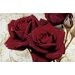 Akzente Gallery Rose Doormat