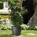 Cadix Geo Round Pot Planter