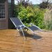 Kingfisher Gravity Garden Lounge Chair
