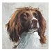 Art Marketing Duke by Sian Tezel Art Print Wrapped on Canvas