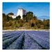 Art Marketing Hill Top Art Print Wrapped on Canvas