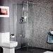 Cassellie 200cm x 30cm Hinged Shower Door