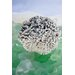 Alan Blaustein Sea Glass with Coral 2 Photographic Print on Canvas