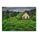 Americanflat Grass House by Lina Kremsdorf Photographic Print