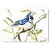 Americanflat Jay II by Suren Nersisyan Art Print in Blue