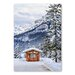 Americanflat Forest Snow by Lina Kremsdorf Photographic Print