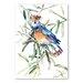 Americanflat Bird II by Suren Nersisyan Art Print