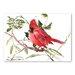 Americanflat Caridnal Bird by Suren Nersisyan Art Print in Red