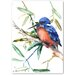 Americanflat Azure Kingfisher II' by Suren Nersisyan Graphic Art Wrapped on Canvas
