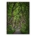 Americanflat 'Forest 2' by Lina Kremsdorf Photographic Print on Wrapped Canvas