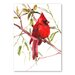 Americanflat 'Cardinal Bird' by Suren Nersisyan Painting Print on Wrapped Canvas