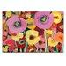 Artist Lane Pair Poppy 2 by Anna Blatman Art Print on Canvas
