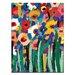 Artist Lane Magic Poppies 2 by Anna Blatman Art Print on Canvas