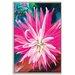 Artist Lane 'Dahlia' by Shani Alexander Framed Art Print on Wrapped Canvas