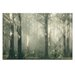 Artist Lane 'Shroud' by Andrew Paranavitana Photographic Print Wrapped on Canvas
